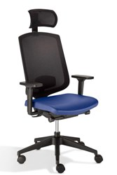 Isense-Exec-with-headrest-21