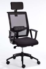 equinox-mesh-back-and-head-rest-nylon-base-with-triad-arms